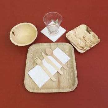 Eco-Disposable Tableware